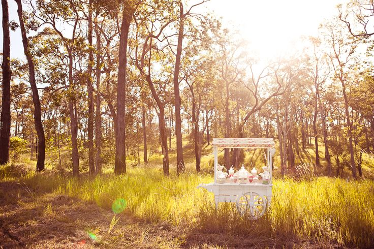 Magical setting for this fairytale candy cart