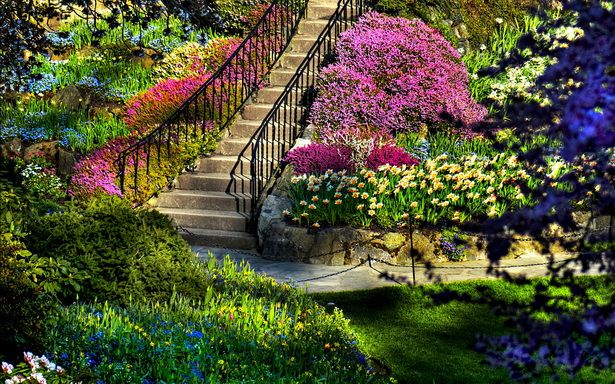 Awesome Colorful Cool Design Beautiful Gardens Ideas Landscaping Steps Iron Black Handrail Violet Fl Beautiful Gardens Garden Pictures Beautiful Flowers Garden