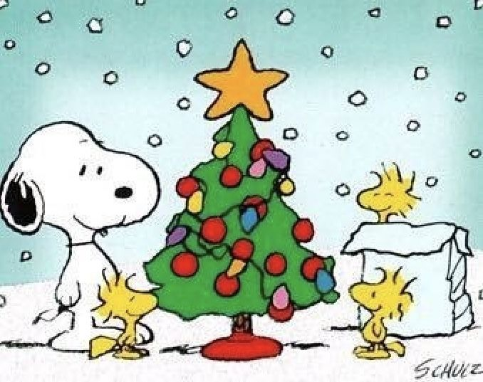 Pin By Kelly On Snoppy Snoopy Christmas Snoopy Wallpaper Snoopy Images