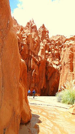 Valle de Las Cuevas o Cuevas de Acsibi. #Salta #Argentina