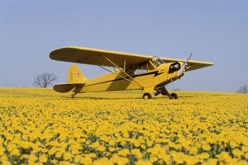 Piper Cub - I always wanted my own little yellow plane!