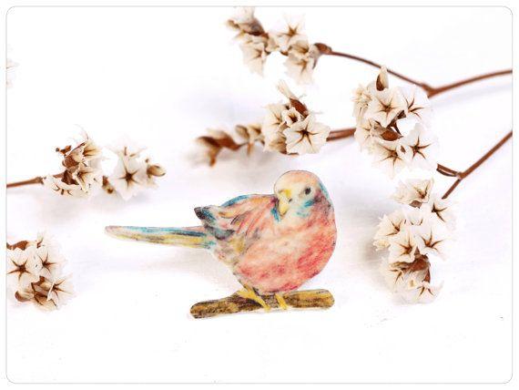 Bourke Sittich, Brosche Sittich, Sittichbrosche • Bourke parakeet, brooch parakeet, parakeet brooch