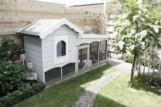 """Great bunny house. Roof shelters from the rain. Fence acts as a wind buffet. Buns would have a """"safe house"""". Just add run and voila."""