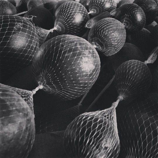 Cocos / Coconuts / Kokosnüsse #bnw #pattern #learnspanish #learningspanish #deutschlernen #lernendeutsch #learningenglish #learnenglish #español #fruits #vegetables #natur