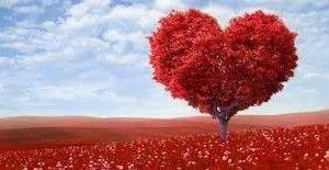 Simpatia do sal grosso para amarração amorosa