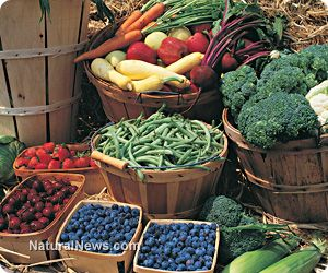 MAINE TOWN FIRST TO DECLARE TOTAL FOOD SOVEREIGNTY, IN OPPOSITION TO STATE & FEDERAL LAWS. There is a food revolution taking hold all over America, whether it is in the form of demanding labeling of GM foods, the right to produce and sell raw milk and other commodities, or--in the case of Sedgwick, Maine--declaring all local food transactions of any kind free and legal.