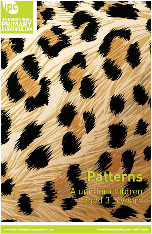 The big idea In this unit the children are going to learn about patterns and asking which patterns they can remember.
