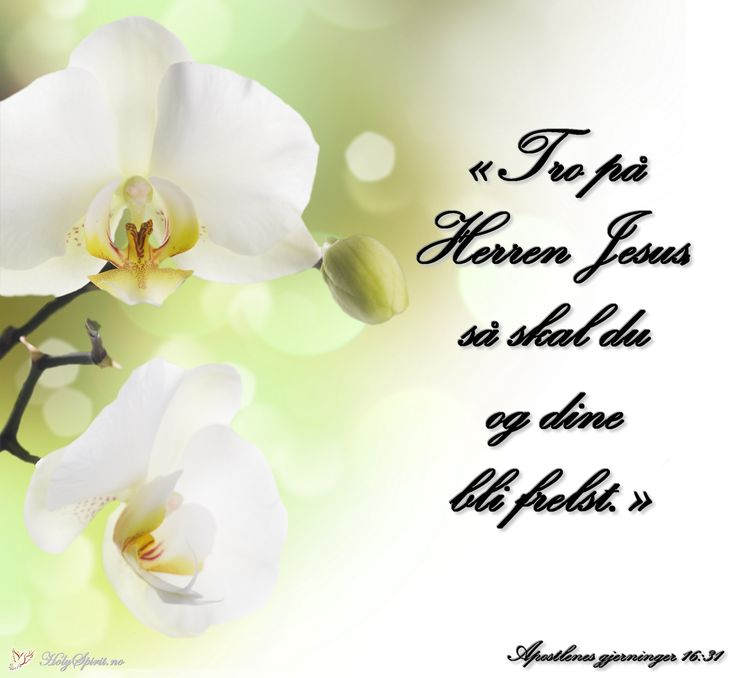Tro: Tro på Herren Jesus, så skal du og dine bli frelst.