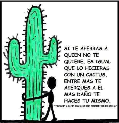 Si te aferras a quien NO te quiere, es igual que lo hicieras con un cactus, entre más te acerques mas daño te haces ti mismo.