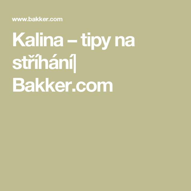 Kalina – tipy na stříhání  Bakker.com