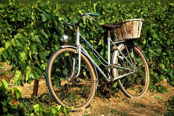 Vanuit uw vakantievilla uitstapjes in Dordogne en omgeving Belvès | Le Beau Reve