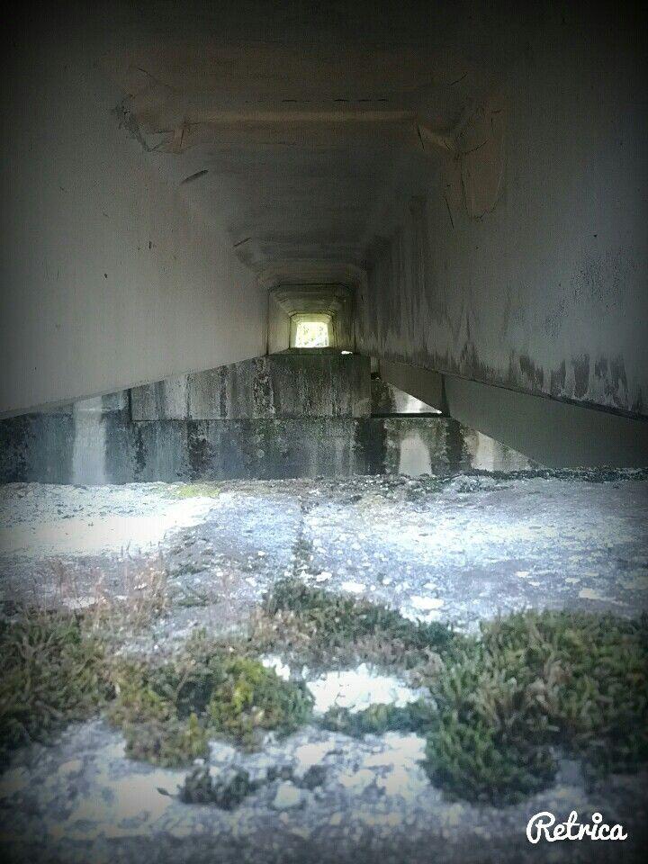 Tunnel..
