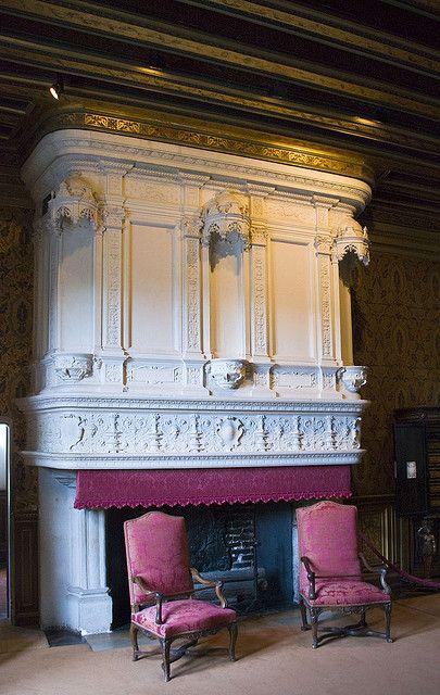 27 best Chateau interior images on Pinterest Architecture, Antique - chambre d agriculture du loir et cher