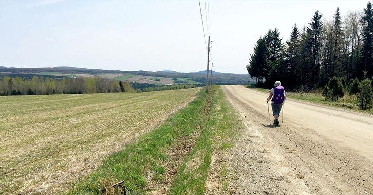 Le chemin de Saint-Rémi est un parcours rural traversant 54 municipalités du Québec. Cet itinéraire quatre saisons sillonne la chaîne de montagne des Appalaches, passe par des rangs de campagne, des sentiers en forêt et sur un minimum de routes en bitume. Il s'agit d'un parcours de niveau intermédiaire. Une centaine d'hébergeurs accueillent les marcheurs dans les villages participants (villageois, gîtes, auberges, hôtels, salles communautaires aménagées, etc.).