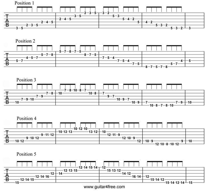 Guitar Scale Guru: The Scale Book - amazon.com