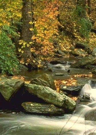 Csodás őszi virágcsokor...,Mindenkinek szeretettel...,Őszidő, de szép, de gyönyörű,November,Csodás őszi kép,Tevékeny ősz,Őszi ajándék,Szép őszi kép...,Ez aztán a vásárfia!,Virágos ág az asszony élete ..., - eckerkata Blogja - Saját fotózás,Advent - Karácsony,Ajándékaim,Anyák napja,Augusztus 20.,Csendélet - Dekoráció ,Csitáry-Hock Tamás,Csorbáné Ildikó ,Dalszöveg,Esti versek, képek ,Farsang - karnevál,Gulácsi Rozika ,Gyerekversek,Gyümölcs - ital - édesség,Gyönyörű tájképek ,Halloween…