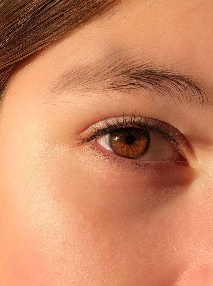 материала янтарный глаз картинки создания уходит более