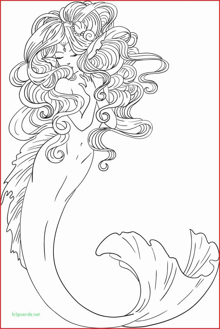 Free Circus Coloring Pages Best Of Shopkin Drawings Watch Drawing Fresh Lovely Free In 2020 Mermaid Coloring Pages Mermaid Coloring Mermaid Coloring Book