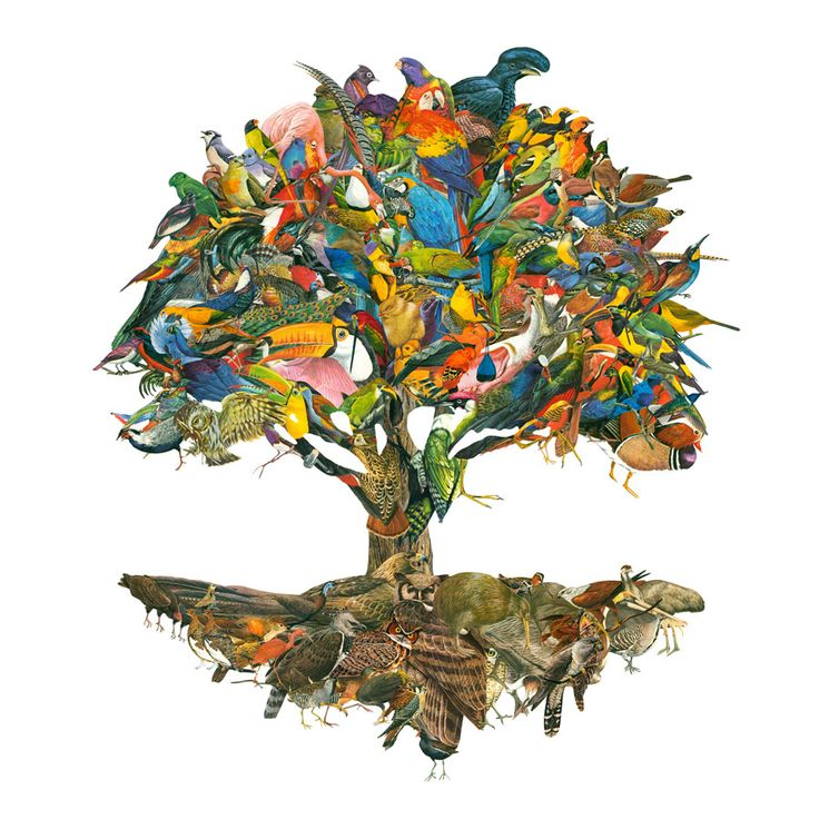 'The Birds' hand made paper collage art Burry Buermans www.burry.be