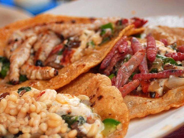Gastronomía Hidalguense, México