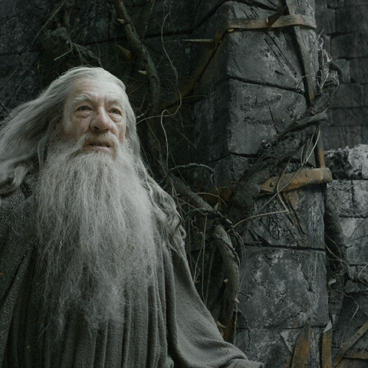 Más de 25 ideas increíbles sobre Ian mckellen dumbledore ...