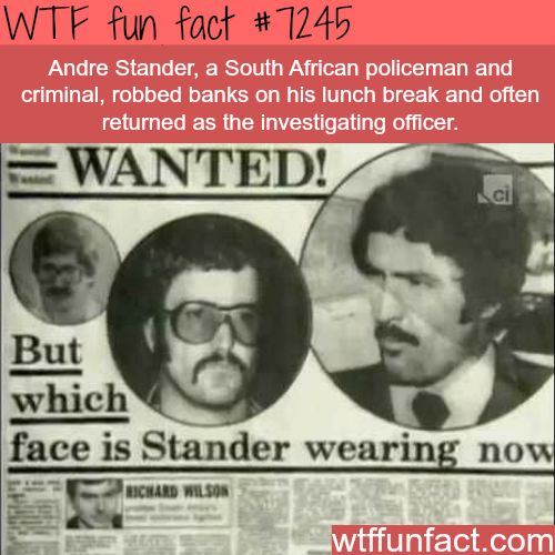 Andre Stander - WTF Fun Fact