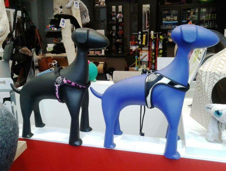 Tre Ponti Hondentuigje bij Purrfect Design in Antwerpen