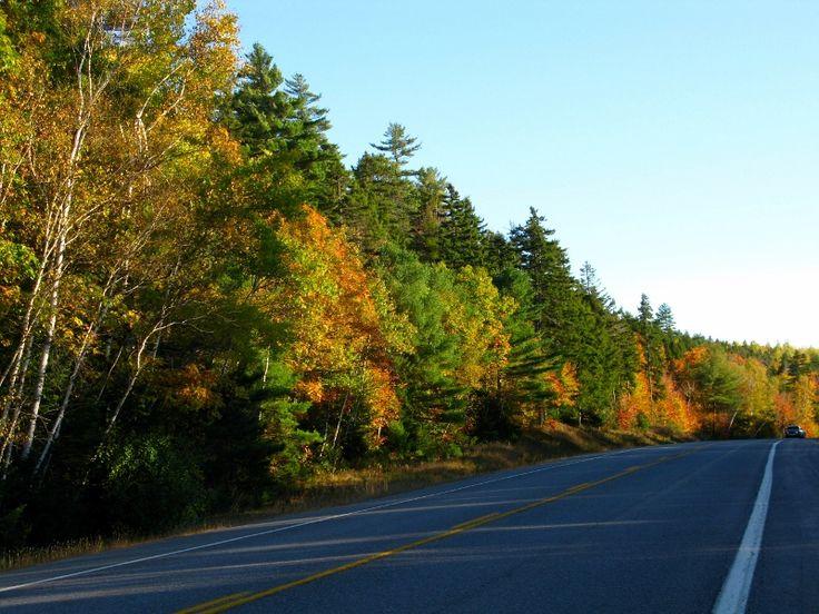 Fall colors in New Brunswick