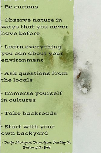 Tips for conscious, nature-inspired living. From an interview with Doniga Markegard, author of Dawn Again: Tracking the Wisdom of the Wild