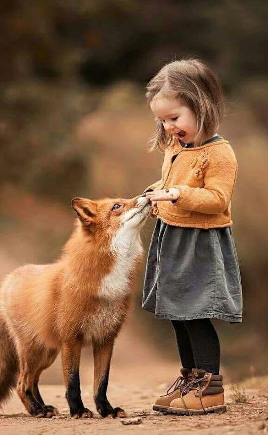 Image de la journée du 4 mai 2018… – #Day #Image   – adorable animal