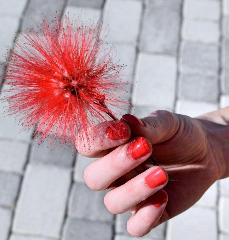 Vernis à ongles - Corail