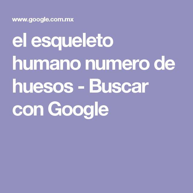 el esqueleto humano numero de huesos - Buscar con Google