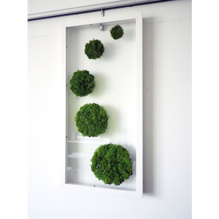 17 best images about moss art on pinterest gardens ferns and mirror wall art. Black Bedroom Furniture Sets. Home Design Ideas