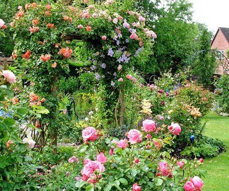 Awesome Bildergalerie Mein sch ner Garten