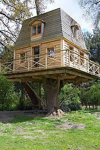 Fantastic tree house!