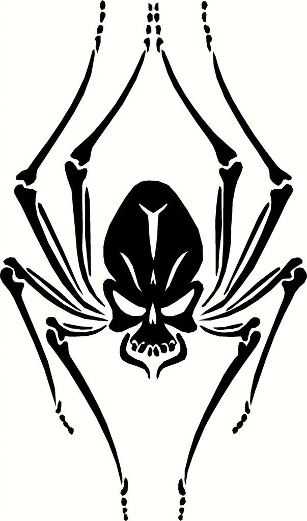 Black Widow Skull Spider Vinyl Decal Graphic Choose Your
