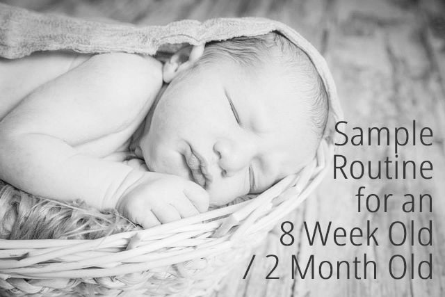 Example routines and schedules for 8 week olds / 2 month olds. What their day should look like, and how to gently develop a pattern in your baby's day.