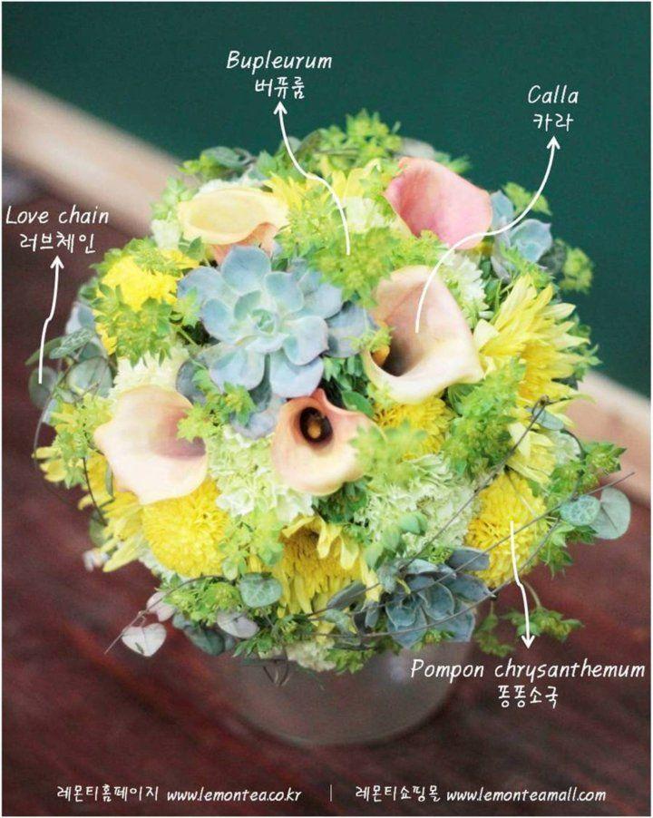 레몬티 오늘의 꽃말'천년의 사랑'카라 부케로도 많이 사용되는 카라 꽃입니다.꽃말도 정말 아름다워요~ 사랑하는 사람에게 프로포즈용으로 카라 꽃다발을 선물하면 정말 의미있겠죠?레몬티플...
