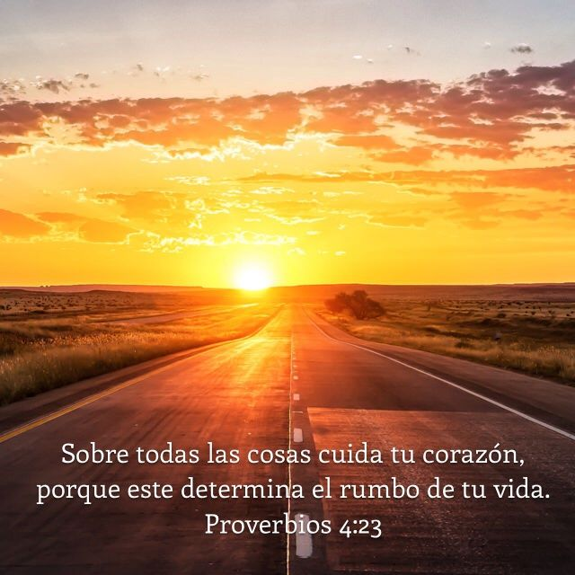 | La Biblia App | Bible.com