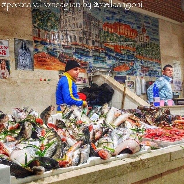 """""""Il reparto del pesce al mercato di San Benedetto a #Cagliari è un caleidoscopio di colori luccicanti: il rosso dei crostacei, il viola dei polpi, l'argento e il verde delle livree dei pesci. Uno spettacolo accompagnato dal profumo del mare, il nostro mare, garanzia di freschezza e genuinità di ciò che è esposto nei banchi"""". #postcardfromcagliari by @stellaangioni"""