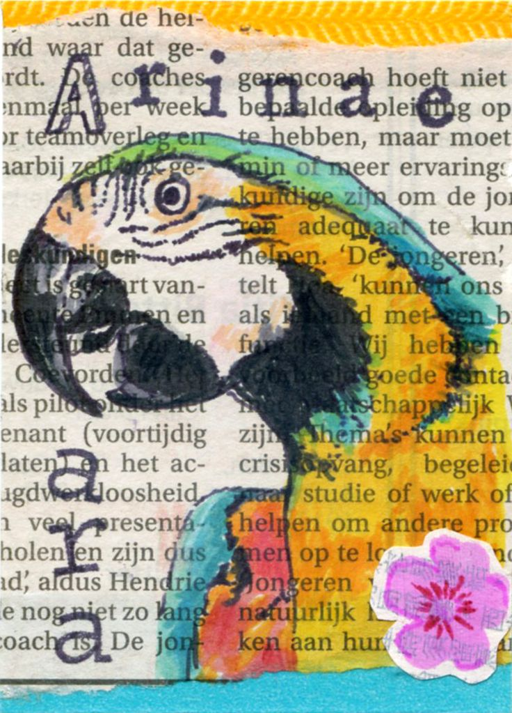 Anamalia #1 'A' for Swap-bot - by El' Papel…