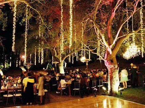 Best 25 Hanging tree lights ideas on Pinterest
