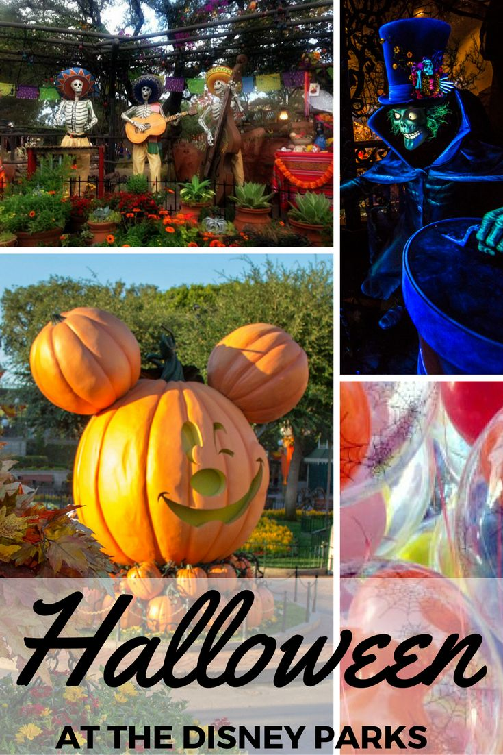 Halloween at Disney Parks: We suggest heading to Walt Disney World or Disneyland in the fall. Why? You'll see how to Halloween at Disney. It's not-so-scary and dripping in magic!