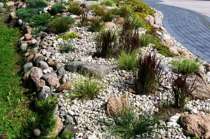 Steinbeet mit Kies und Pflanzen