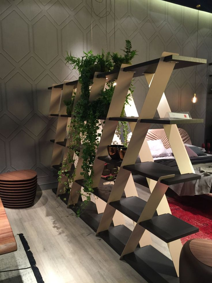 Large bookshelf wall divider with green plants hanging