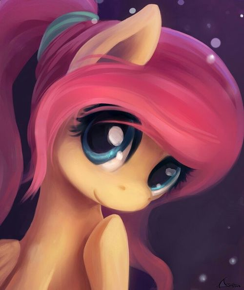 pony and fluttershy image