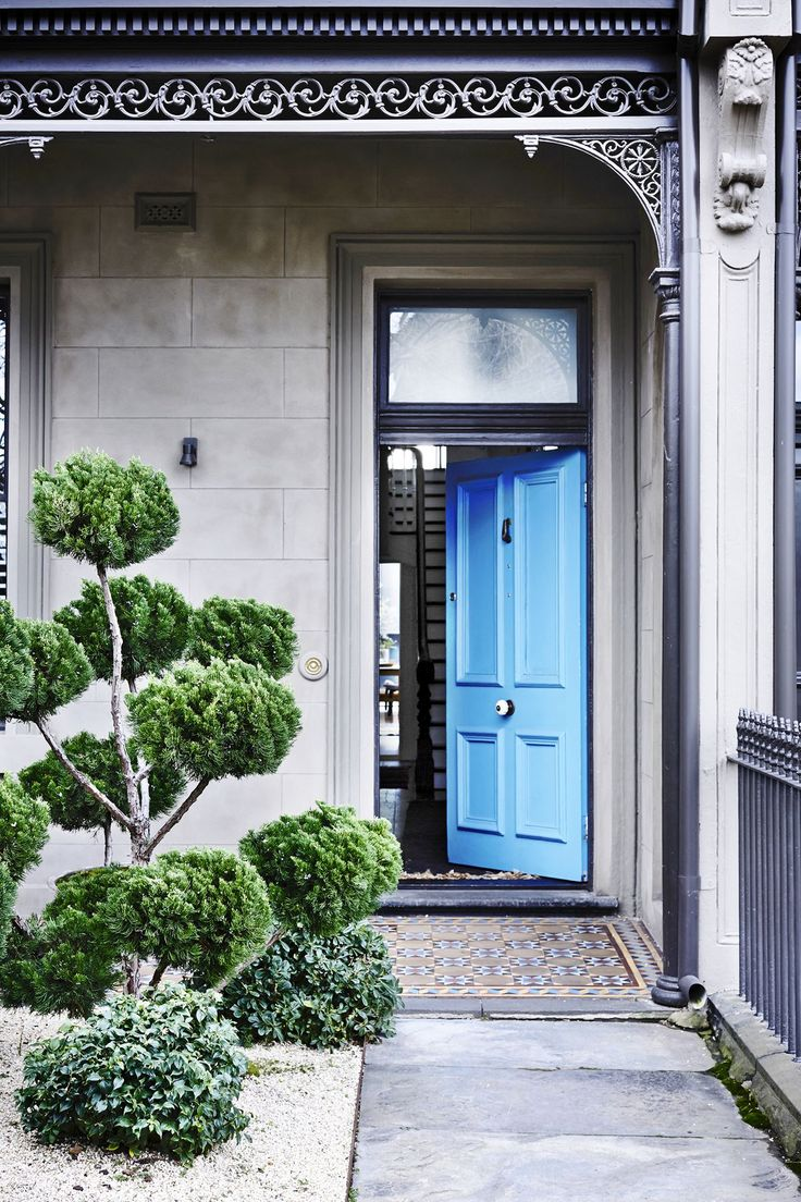 The elegantly sculpted Chinese juniper and front door painted in Porter's Paints Westport Blue hint at the design surprises inside.