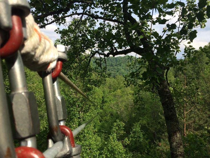 Go ziplining at Navitat in Barnardsville, NC