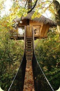 La cabane zen: une cabane dans les arbres perchée à 8m de hauteur dans un chêne centenaire
