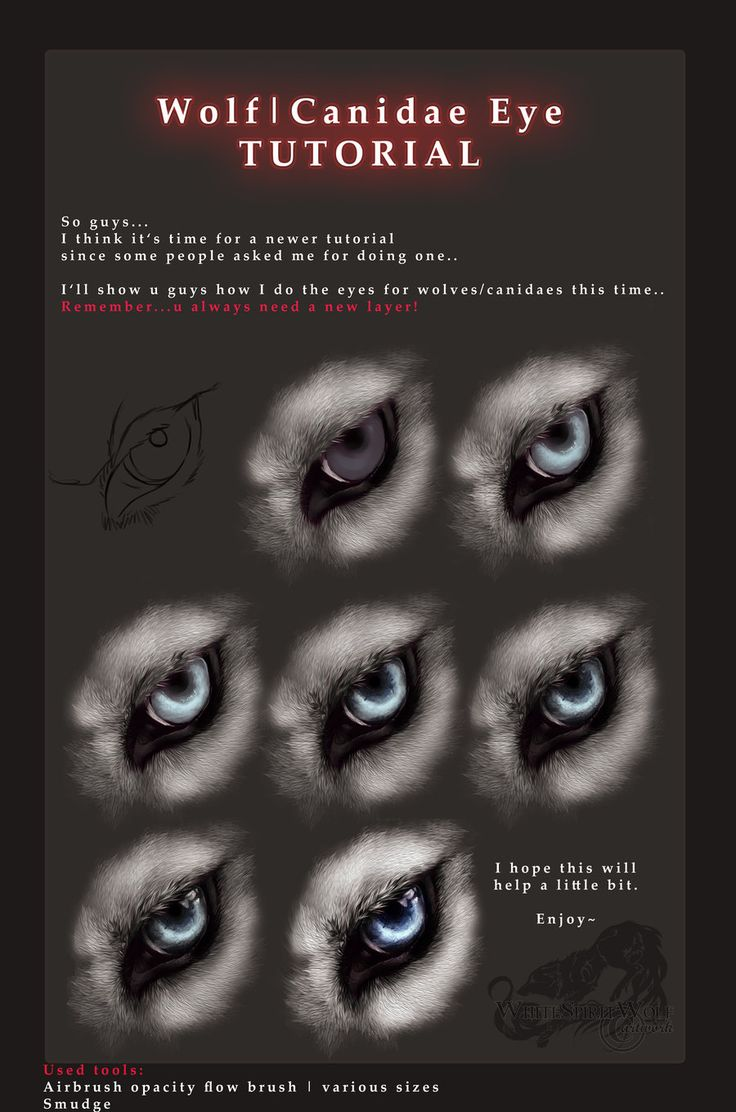 14 best digital drawing painting tutorials tips references wolf canidae eye pictorial tutorial digital drawing painting by whitespiritwolf on deviantart ccuart Image collections
